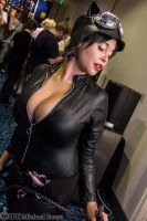 Catwoman 12 by Insane-Pencil