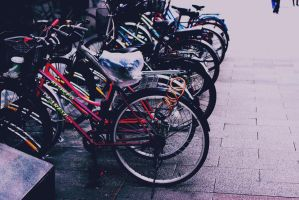 Bicycles by stephkc