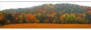 Fall panoramic.DSCN1752 by harrietsfriend