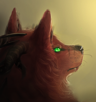 Random DW head bla by dragonicwolf