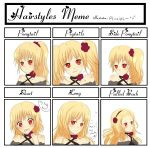 Hairstyle Meme by Pluvias