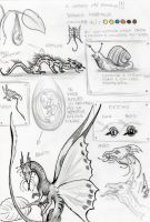 New Dragon (sketches) by EleEstel