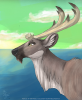 Majestic Caribou by NorthboundFox