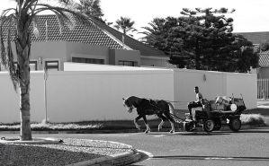 Scrap collectors' horsecart by AfricanObserver