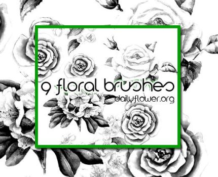 9 ps floral brushes by creativesplash
