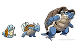 Squirtle to Blastoise by koeb