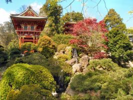 Japanese Tea Garden by SomeOldGuy