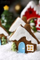 Gingerbread house cookies by kupenska
