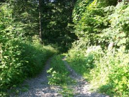 Gravel Path 2 by RD-Stock