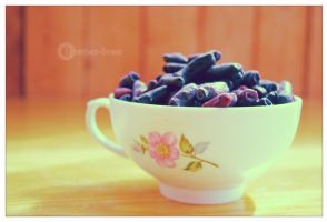Honeyberry 3 by erzsebet-beast