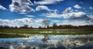 Spring floods... by Ikabe