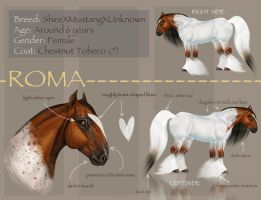 Roma Character Sheet by Ospreyghost13