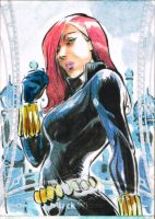 3- Black Widow by Kofee77