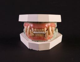 Werecat Dentures by DelectablyDeviant