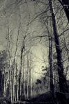 middle of nowhere III by GothicXpress