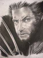 Wolverine - Hugh Jackman by animelover4400