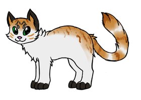 kitty design 03 by miaowstic