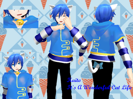 .:Kaito:. It's A Wonderful Cat Life by NekuHikari