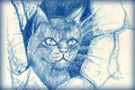 Cat Warrior by philippeL