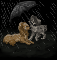 When the skies get rough... by jealousapples