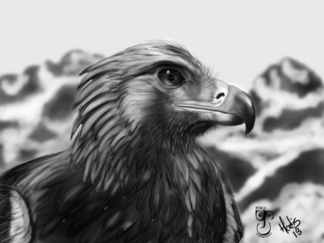 Eagle by H3rdis