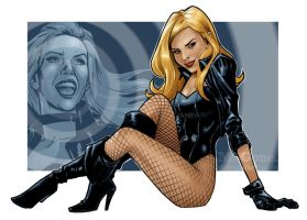 Black Canary, Redux by mcguan
