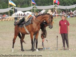 Hungarian Festival Stock 133 by CinderGhostStock