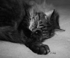 Asleep by au-bout-de-mes-reves