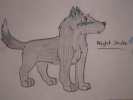 NightShade by 7MoonWillow
