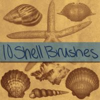Shell Brushes 1 by Neon06