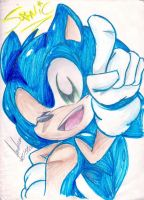 Sonic: What's up people by andreahedgehog