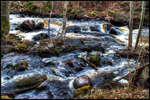 Water stream by kirtap91