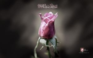 Muhammadi flower by islamicwallpers