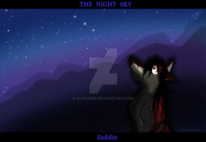 THE NIGHT SKY by alphakw