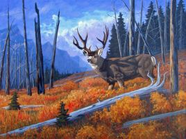 Mule Deer Print by WildartBD