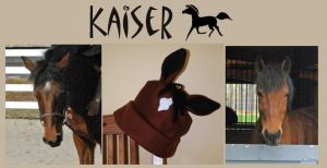 Custom Hat - Kaiser by DSL-Devin