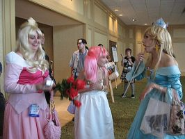 AWA 2008 - 014 by guardian-of-moon
