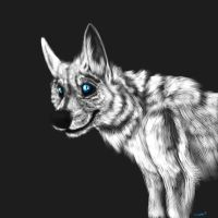 White Wolf Blue Eyes by TieWolf