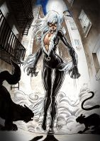 BLACK CAT by Vinz-el-Tabanas