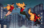 Robins by vindications