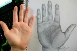 Hand by EricaMeow