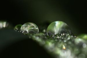 Water droplets by twombold