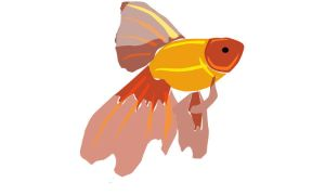 Goldfish Vector Image by theseventhshadow