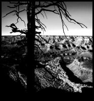 Grand Canyon IV by Lucky13Grl