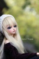 Day Dreaming by TayMcKayPhotography