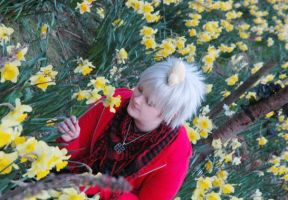 APH: Amongst The daffodils by xPixieSoulx