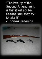 Jefferson Quote by Wolfie303