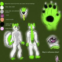 Skye's ref sheet by Mirera