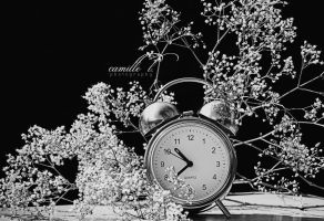 Time, it needs time ... by BlackFlowerBlossoms