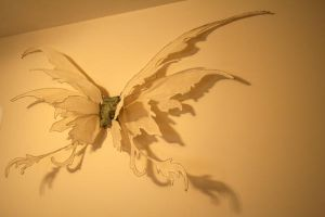 fairy wings by bewm